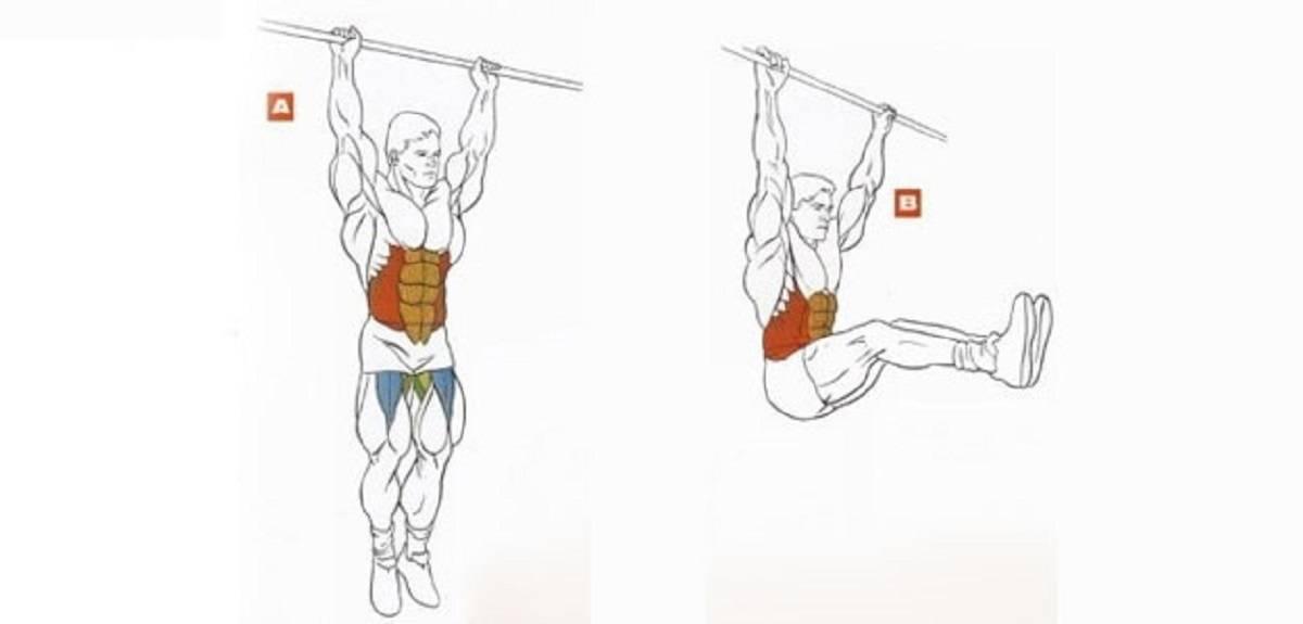 Подъем ног в висе на перекладине: техника выполнения, мышцы