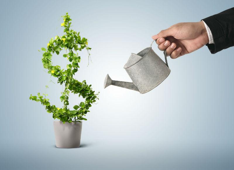 Инвестиции в себя – самые выгодные инвестиции