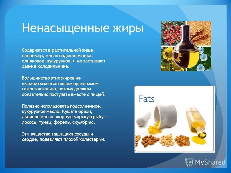 Чем полезен жир и для чего он нужен организму человека, источники полезных жиров в питании