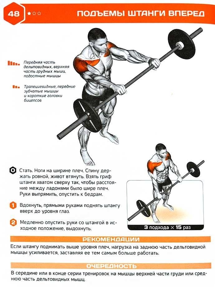Толчок штанги – техника выполнения, какие мышцы работают, нормативы