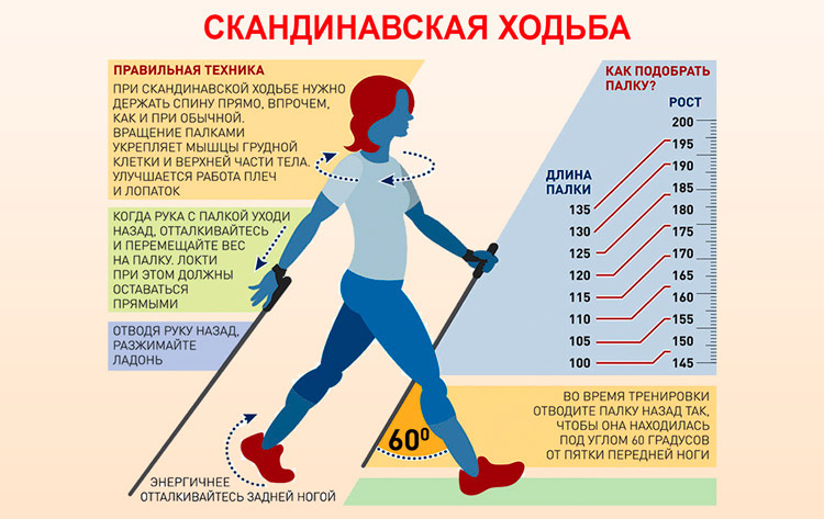 Как определить высоту палок для скандинавской ходьбы?