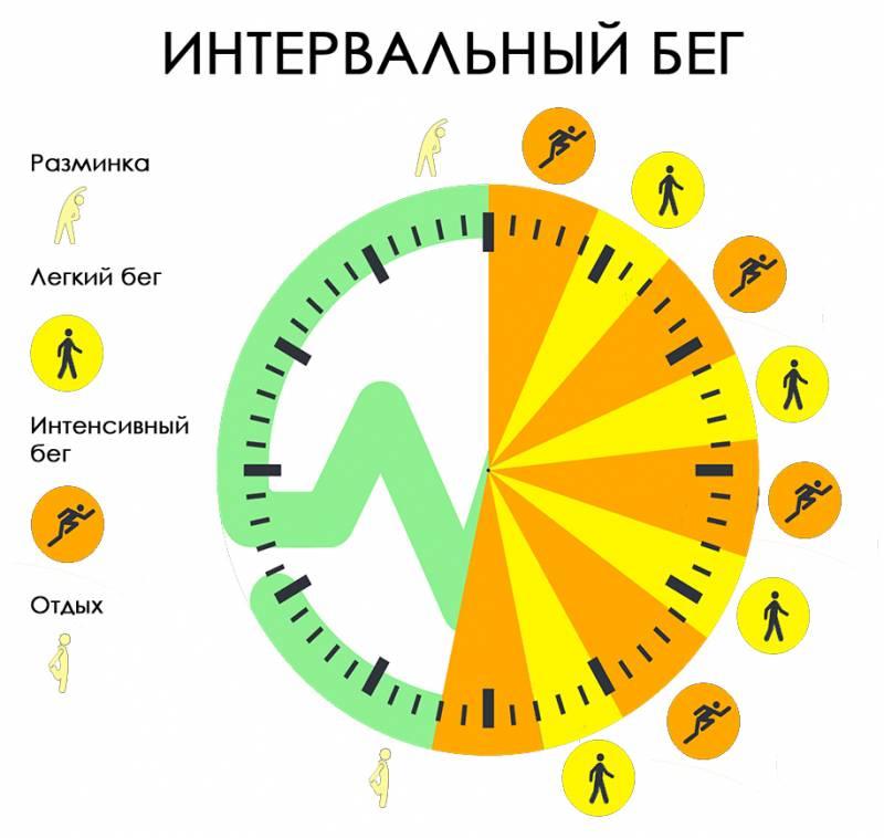 Интервальный бег: программа тренировок для начинающих для сжигания жира