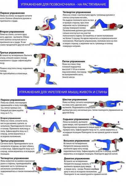 Упражнения для укрепления мышц спины и поясничной области для дома и тренажерного зала