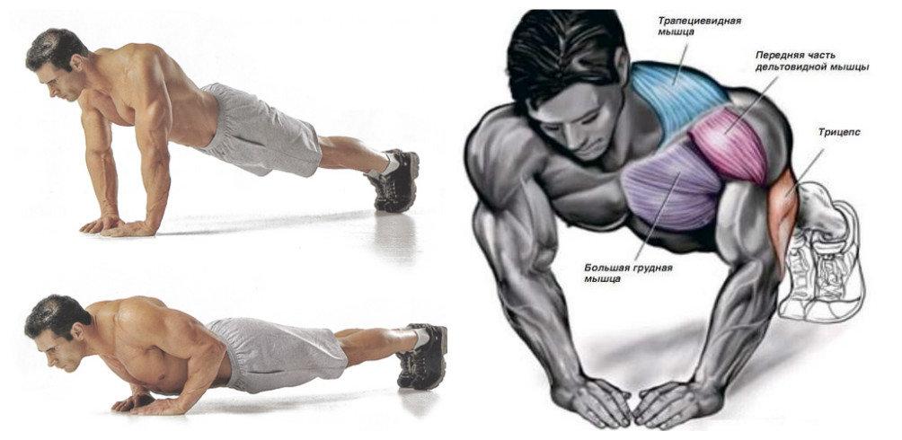Зачем качать мышцы?