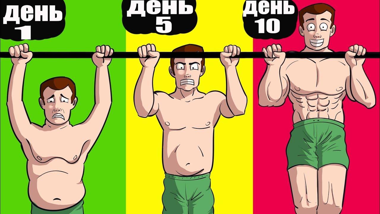 Что будет, если каждый день отжиматься и подтягиваться? :: syl.ru
