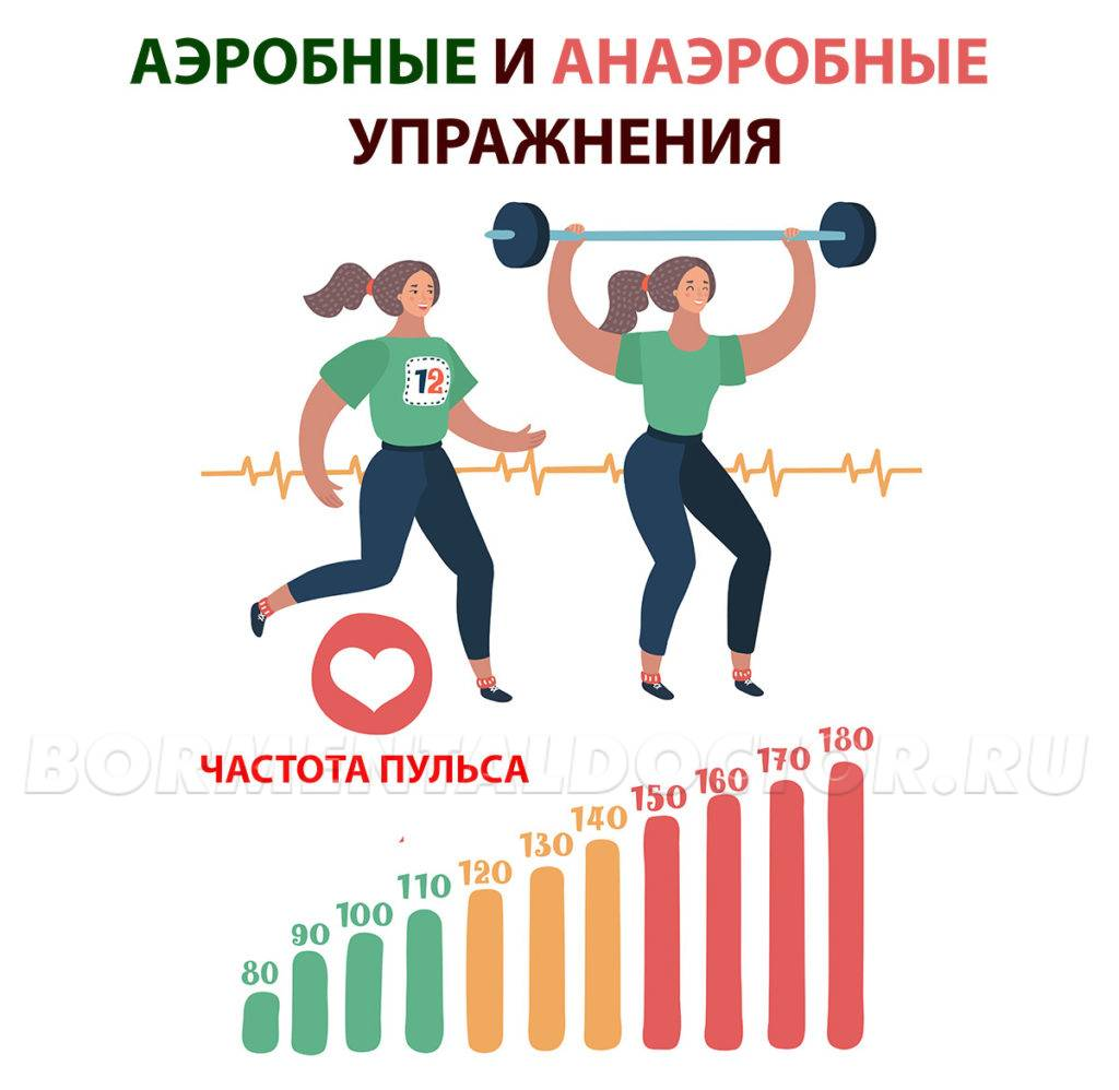 Аэробная и анаэробная нагрузка — описание и отличия видов тренировок