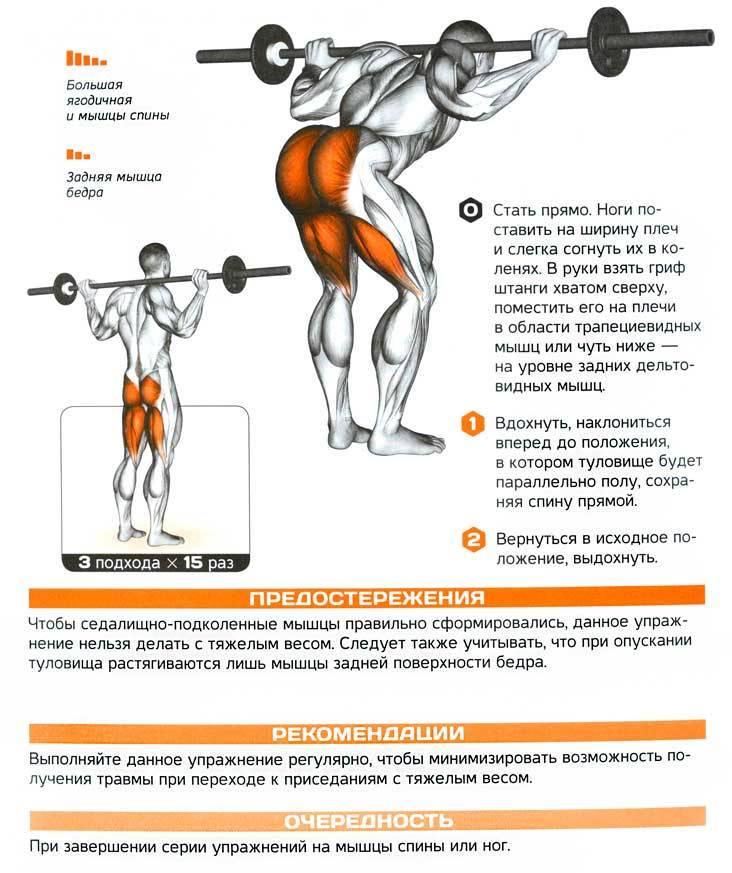 Суперсеты: упражнения для всего тела. жиросжигающие тренировки в тренажерном зале - tony.ru