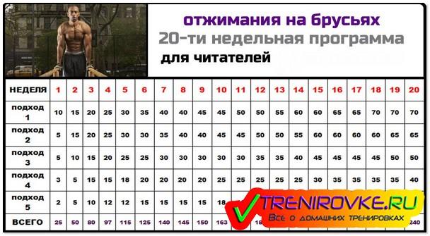 Тренировка: программа 100 отжиманий – зожник тренировка: программа 100 отжиманий – зожник