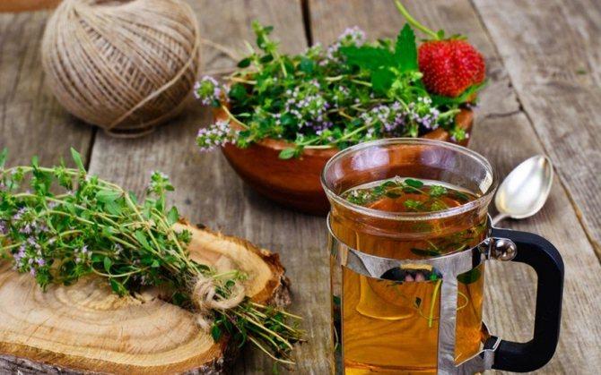 Ромашковый чай: польза и вред, отзывы