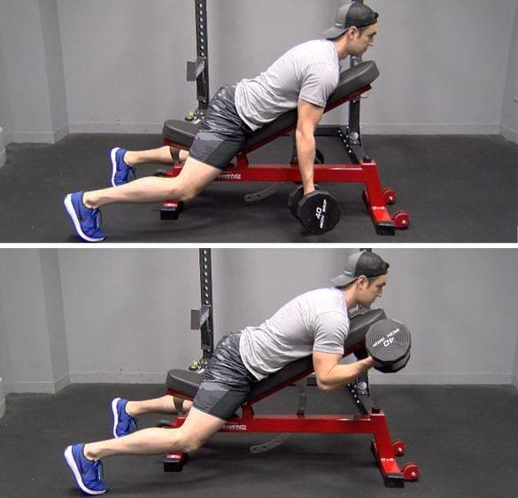 Тренировки рук: 15 программ – часть №2 • bodybuilding & fitness