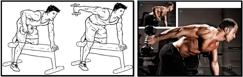 Разгибание рук в наклоне — sportfito — сайт о спорте и здоровом образе жизни