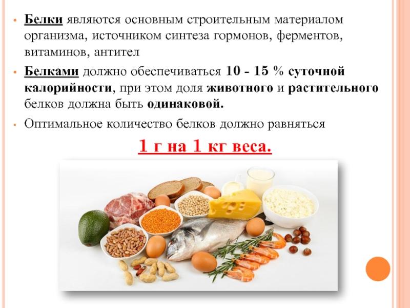 Обмен белков (метаболизм белков) в организме человека