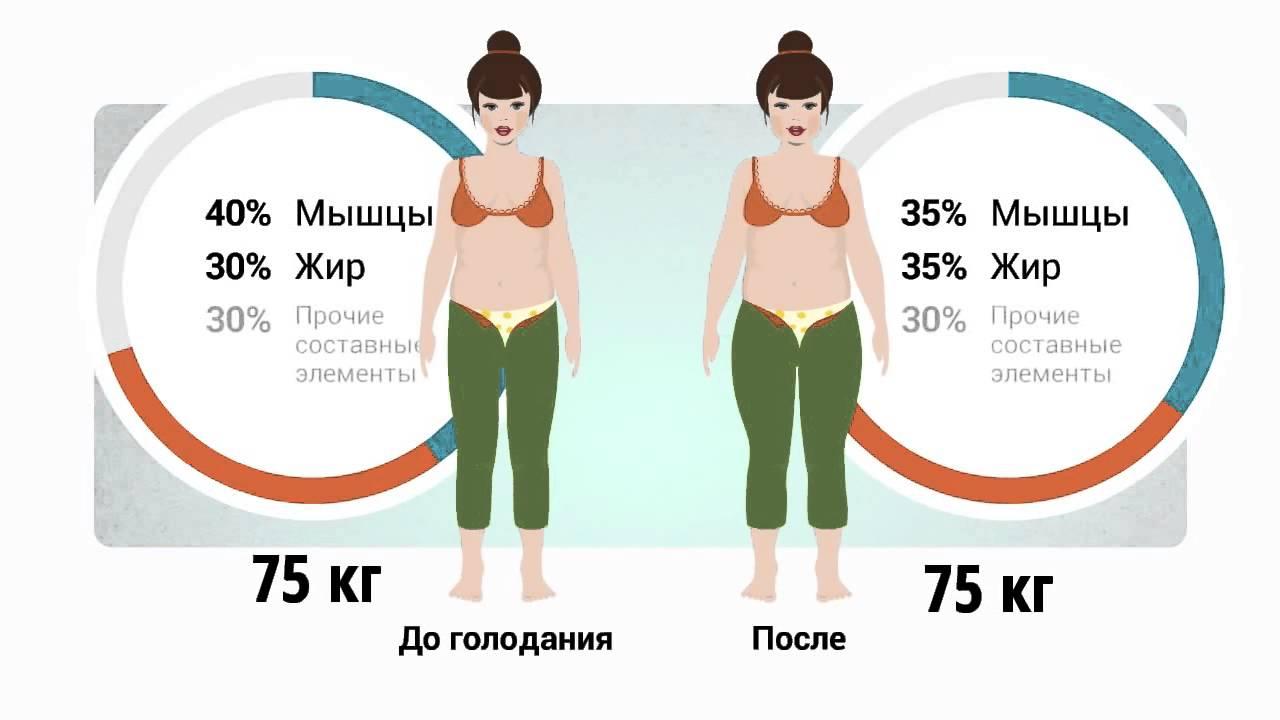 Почему при похудении первыми страдают мышцы и выводится лишняя жидкость, а не жир