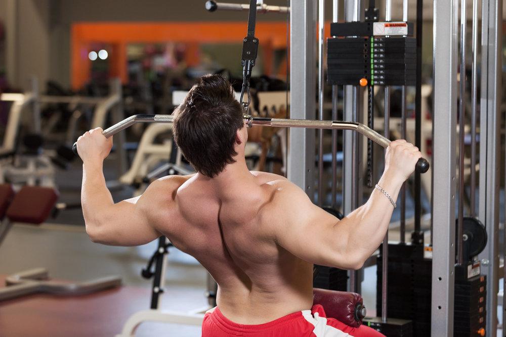 Накачать спину в тренажерном зале: силовые тренировки на массу, упражнения для развития мышечного корсета