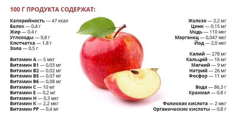 Яблоко 1 шт калории. калорийность разных типов яблок | фитнес для похудения