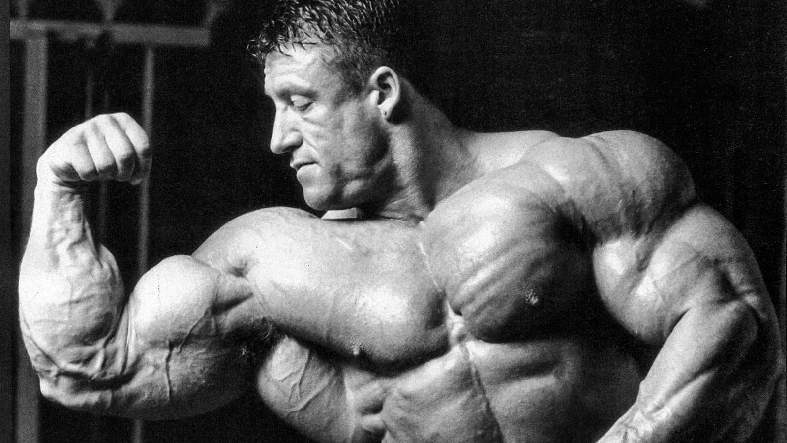 Сколько мышц можно вырастить без использования стероидов – зожник  сколько мышц можно вырастить без использования стероидов – зожник
