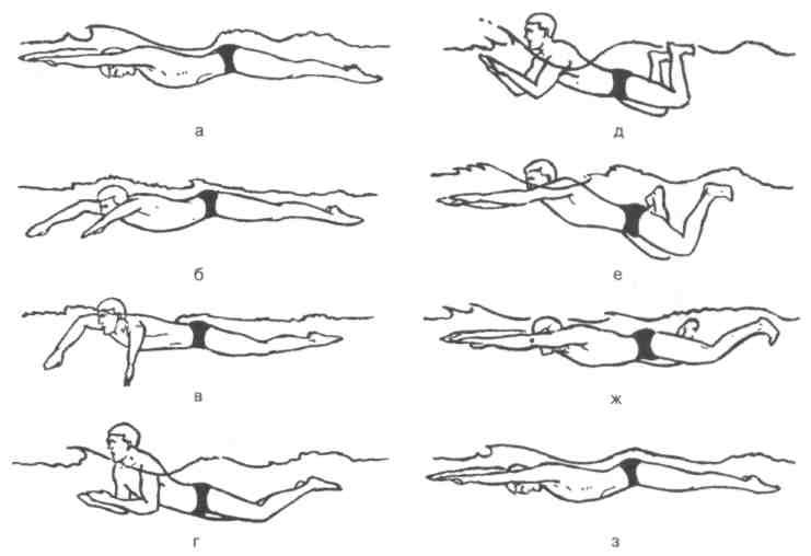 Видео уроки плавания для начинающих - как научиться самостоятельно плавать взрослому, упражнения для обучения в бассейне