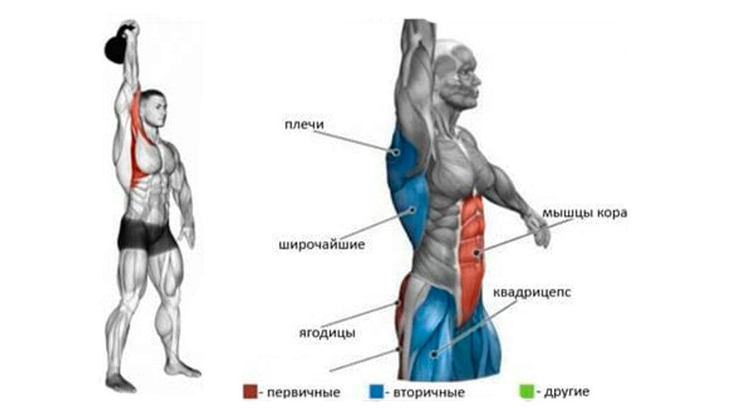 Лучшеи упражнения с гирей на все группы мышц и коомплекс круговй тренировки с гирей в доомашних условияхwomfit