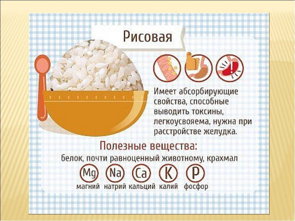 Рисовая лапша: польза и вред, сколько калорий, химический состав, противопоказания