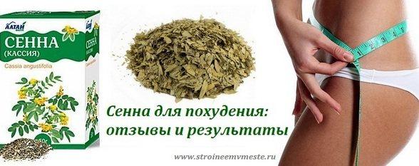 Трава сенна