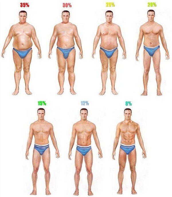 Питание на сушке тела: продукты для диеты и примеры меню для жиросжигания для мужчин и женщин