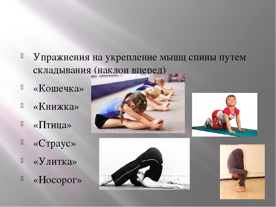 Stretching (стретчинг) в фитнесе: комплекс упражнений