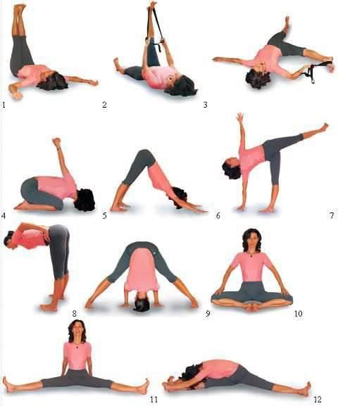 Аштанга йога для начинающих — основные асаны и комплексы упражнений для похудения в домашних условиях