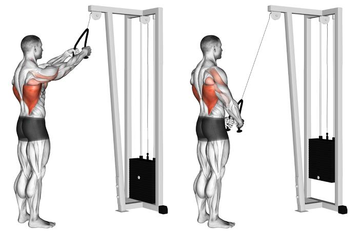 Пуловер в кроссовере: как делать упражнение для спины в тренажере с верхнего блока