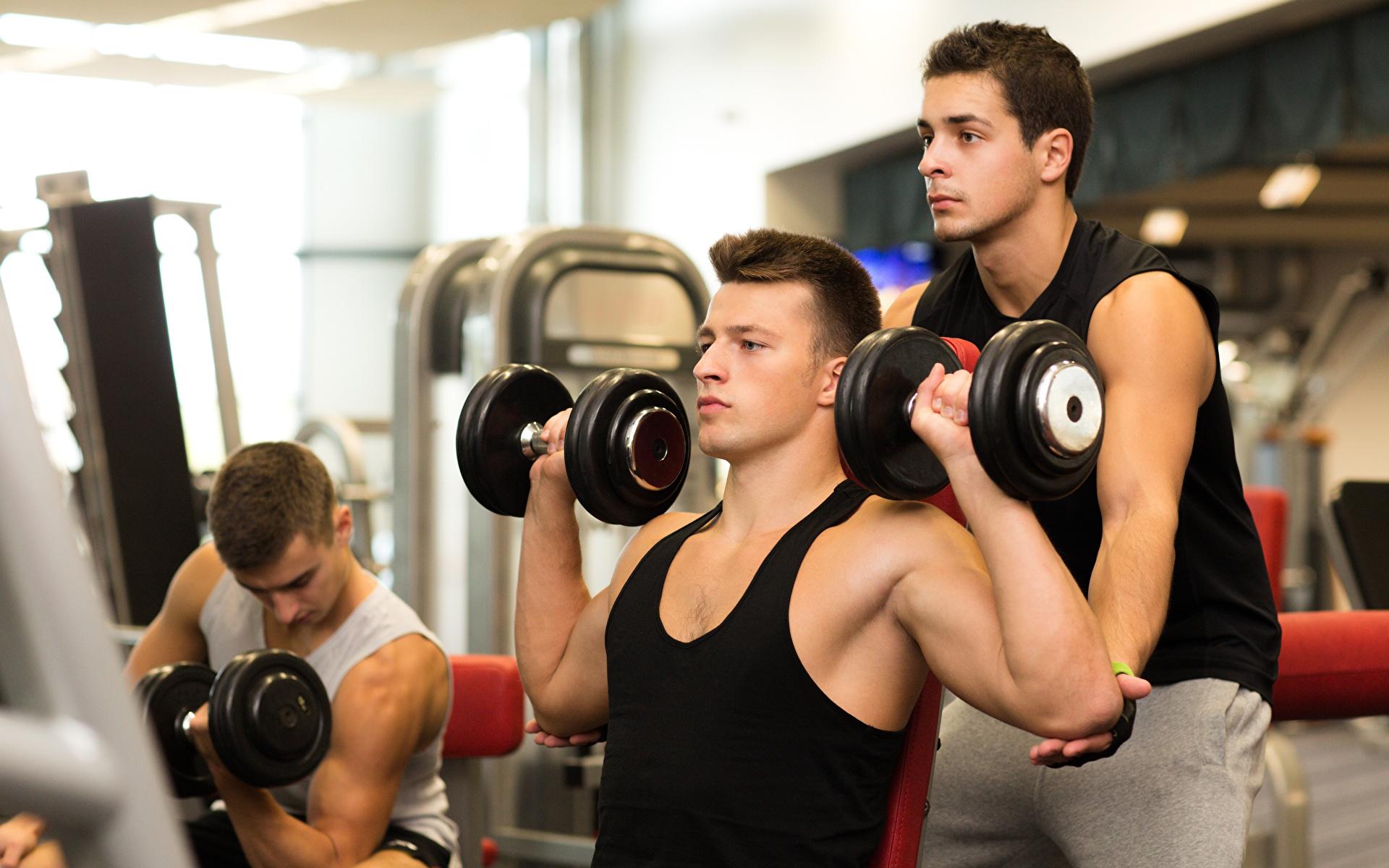 Спорт для новичков. возможен ли бодибилдинг дома?