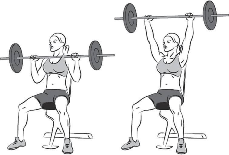 Армейский жим штанги стоя (жим штанги с груди стоя): какие мышцы работают, техника выполнения