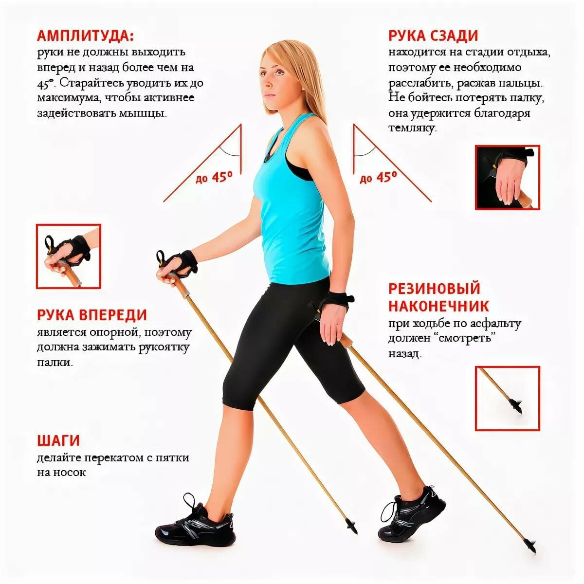 Техника шведской ходьбы с палками