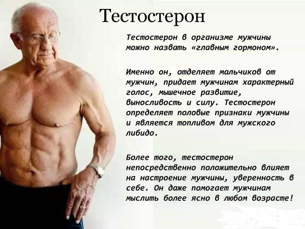 Травы повышающие тестостерон у мужчин - рецепты настоек
