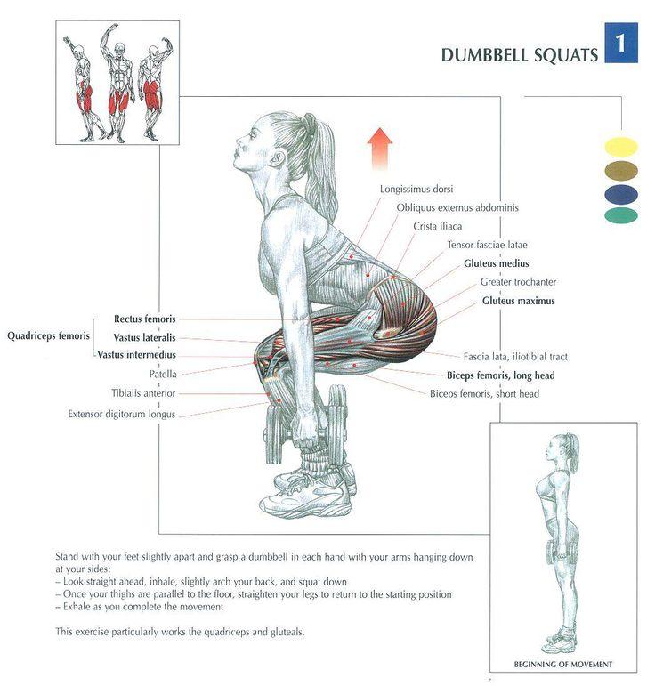 Как накачать ноги дома: лучшие упражнения