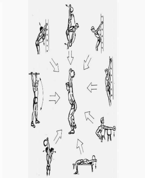 14 упражнений для рук и живота + готовый план + фото