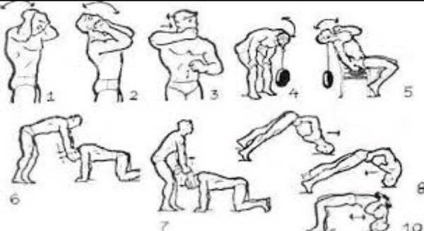 Гимнастика для шеи - 4 упражнения которые творят чудеса | запитание