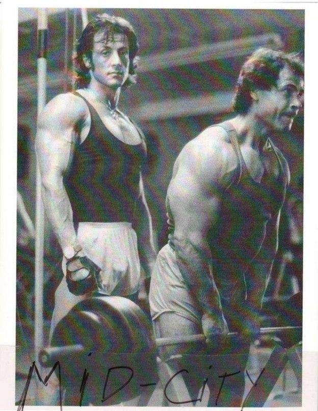 Сильвестер сталлоне: ударные тренировки для съемок в фильме «рокки» — fitness guide