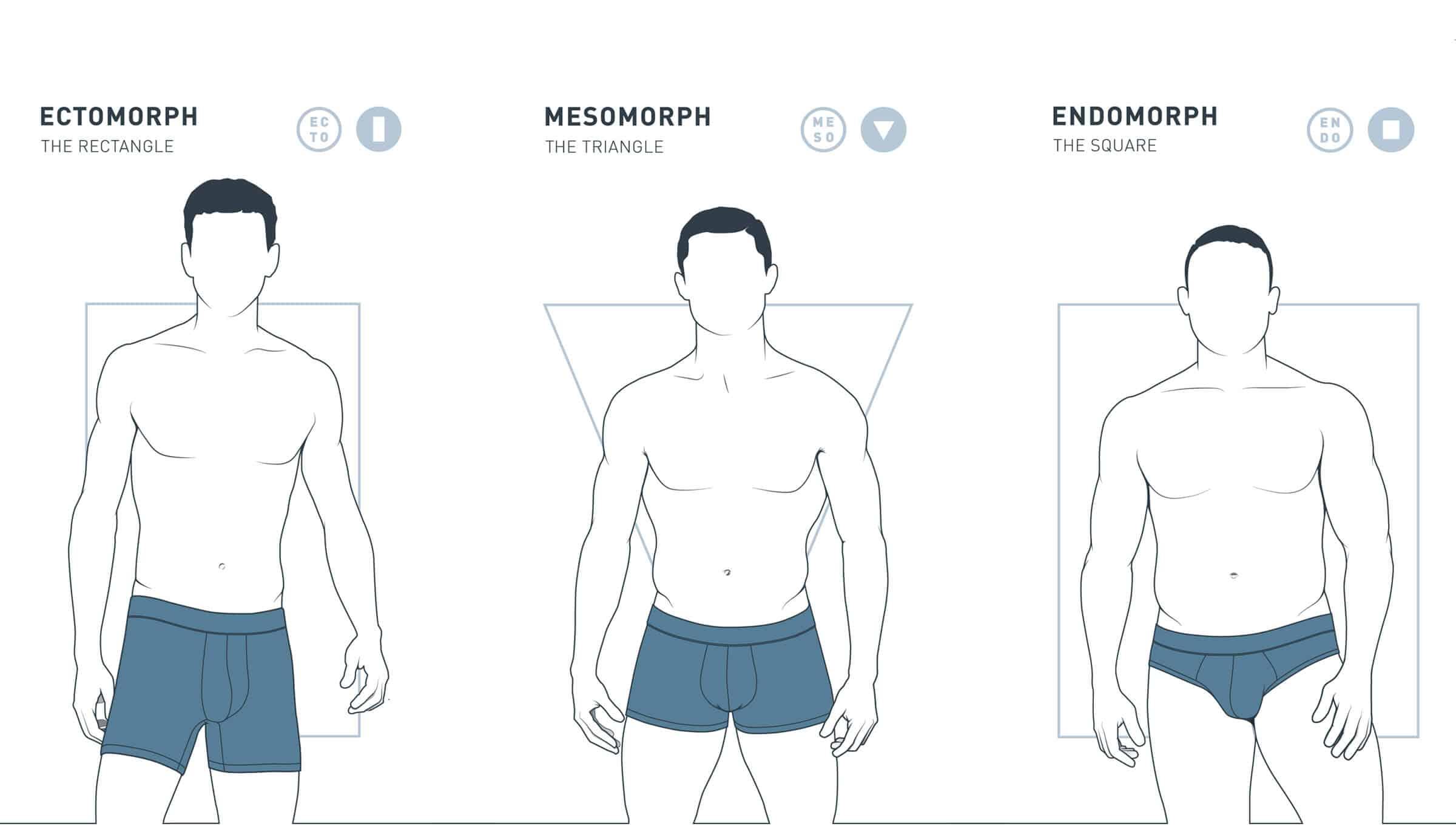 Эндоморф: кто это, как определить по телосложению?