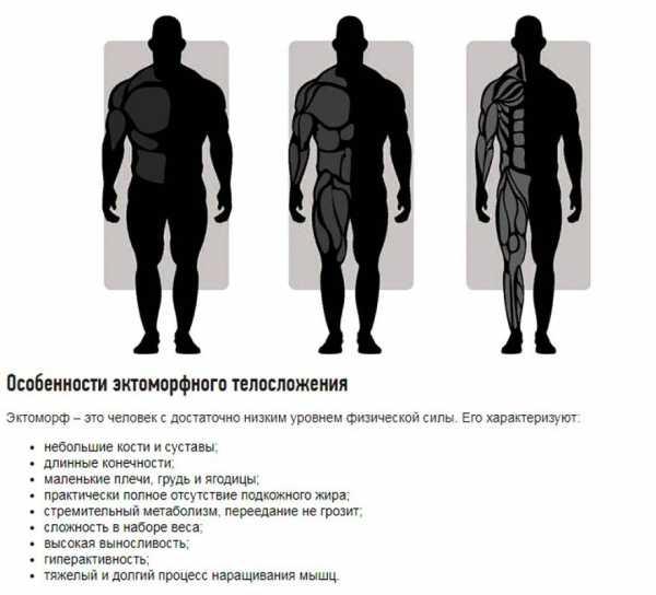 Тренировки для эктоморфа: программа для набора мышечной массы