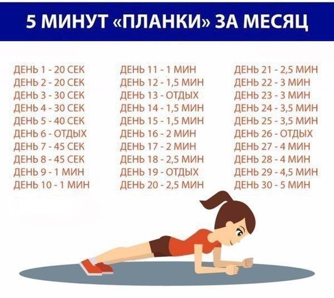 Планка 5 минут в день: простой пятиминутный комплекс планки на каждый день