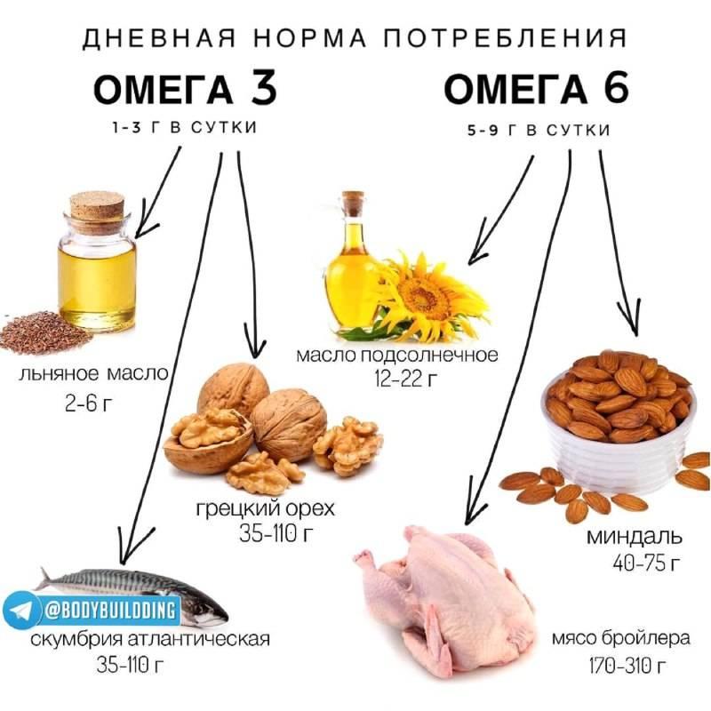 12 продуктов с высоким содержанием омега-3 жирных кислот   пища это лекарство