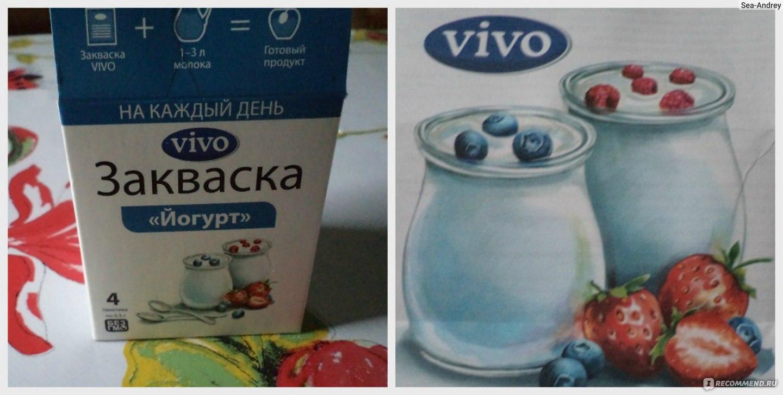 Как приготовить полезный йогурт с пробиотиками в домашних условиях?