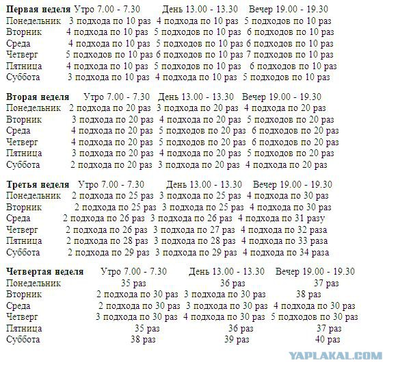 Программа отжиманий от пола: таблица для начинающих мужчин и девушек