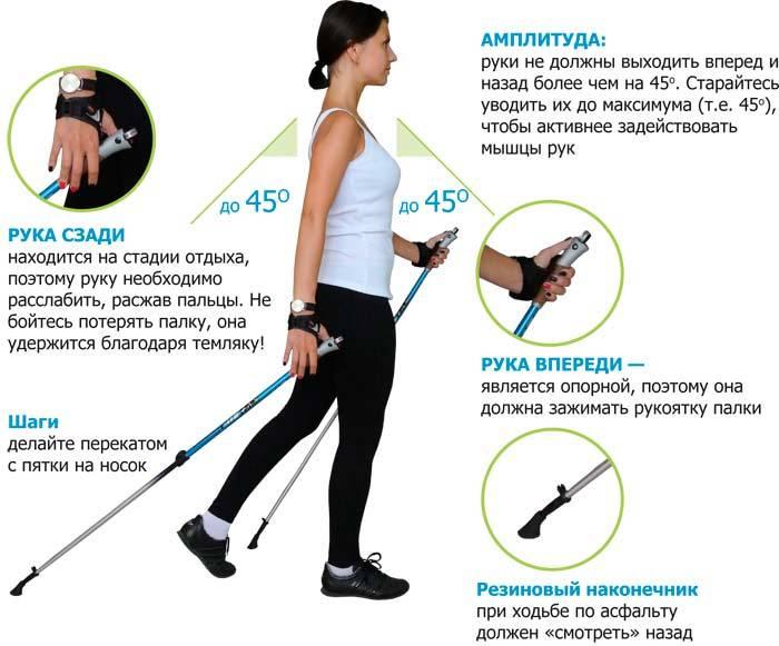 Cкандинавская ходьба с палками: польза и вред, как похудеть, инструкция, видео
