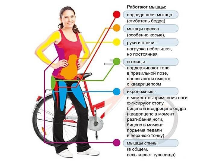 10 упражнений, которые можно выполнять на ступеньках