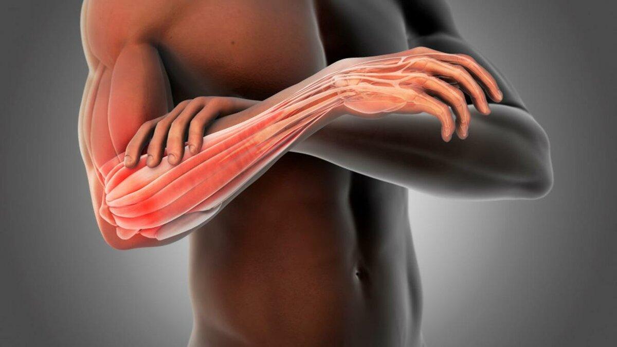 Молочная кислота в мышцах после тренировки - как вывести