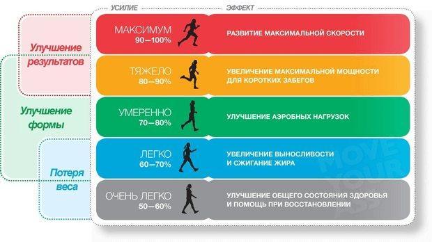 Пульс при занятии спортом: норма и отклонения | сердечник какой пульс в норме при занятии спортом? | сердечник