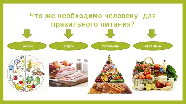Организму в помощь: 6 главных питательных веществ