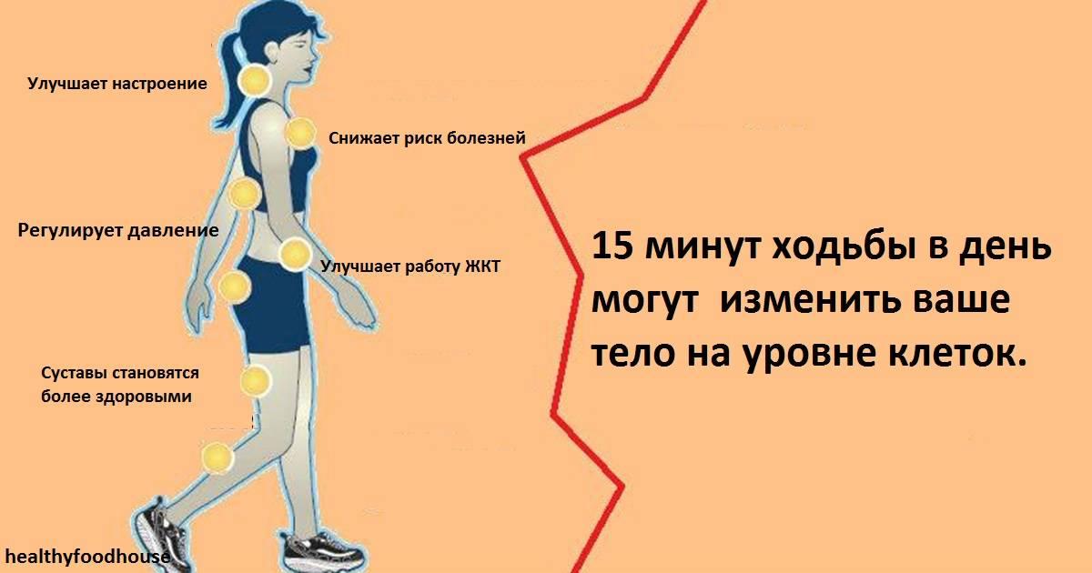 Оздоровительная ходьба— сколько и с какой скоростью