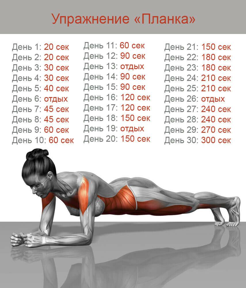 Планка: как правильно делать упражнение для похудения 30 дней