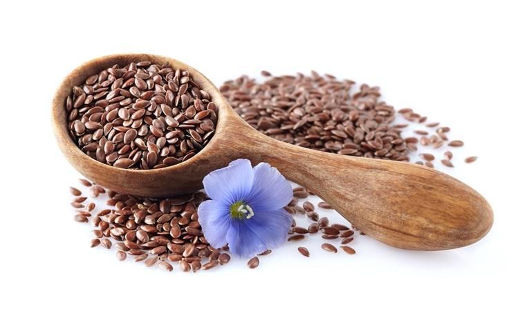 Семя льна: полезные свойства, противопоказания,польза и вред